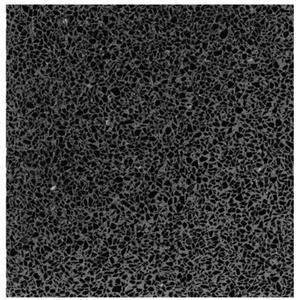 Vloertegel Terre d'Azur Granito 40x40x1,4 cm Zwart 1M2