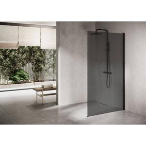Ben Delphi Inloopdouche met Grijs Glas 120x200 cm Mat Zwart