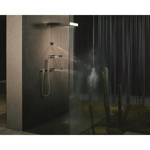 Dornbracht Vertical Shower Regensdouche met Wandverbinding Platina Mat