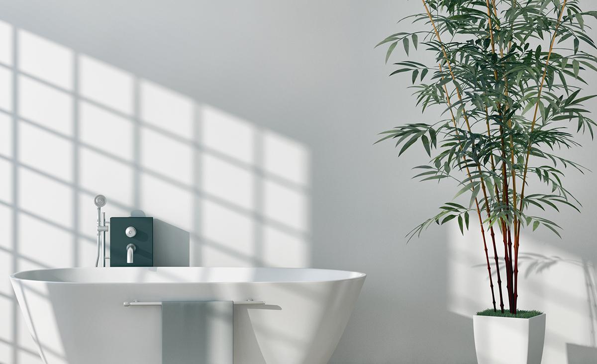 Planten Voor In De Badkamer.Planten In De Badkamer Fris En Natuurlijk Inspiratie