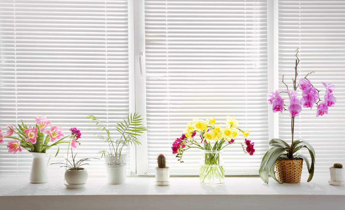 5 tips voor raamdecoratie in de badkamer