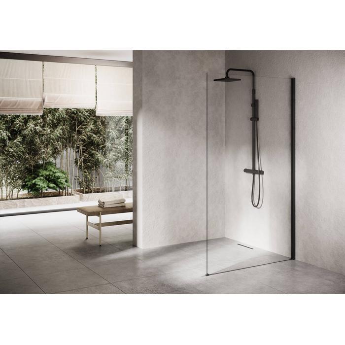 Ben Delphi Inloopdouche met Helder Glas 100x200 cm Mat Zwart
